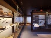 Vitrines de l'exposition permanente du musée ©J.-Y. Lacôte/ARCHÉA